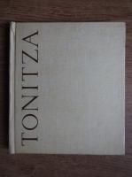 Anticariat: Raul Sorban - Nicolae Tonitza