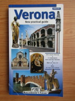Anticariat: Renzo Chiarelli - Verona. New practical guide