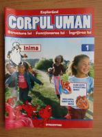 Anticariat: Revista Explorand Corpul Uman, nr. 1, 2000