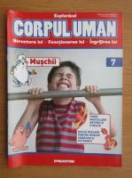 Anticariat: Revista Explorand Corpul Uman, nr. 7, 2000