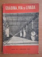 Revista Gradina, via si livada, nr. 7, ianuarie 1963