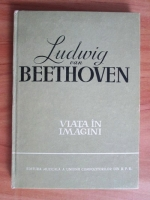 Richard Petzoldt - Ludwig van Beethoven. Viata in imagini