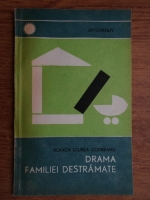 Rodica Ciurea Codreanu - Drama familiei destramate