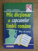 Rodica Lazarescu - Haz de necaz. Mic dictionar al capcanelor limbii romane