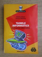 Rodica Matei - Tainele informaticii