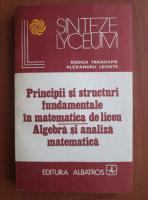 Rodica Trandafir - Principii si structuri fundamentale in matematica de liceu. Algebra si analiza matematica