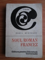Romul Munteanu - Noul Roman Francez
