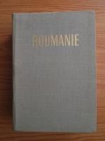 Anticariat: Roumanie