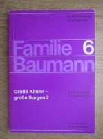 Rudolf Schneider - Familie Baumann (volumul 6)