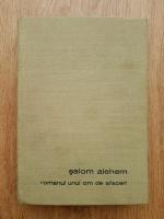 Anticariat: Salom Alehem - Romanul unui om de afaceri