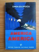 Anticariat: Sanda Golopentia - America - America