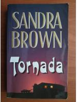Anticariat: Sandra Brown - Tornada