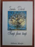 Sandu David - Timp fara trup