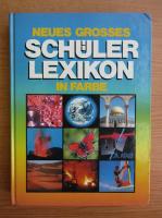 Anticariat: Schuler lexikon