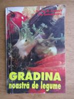 Serban Popa - Gradina noastra de legume