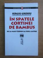 Anticariat: Sergiu Grossu - In spatele cortinei de bambus