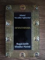 Sfantul Nicodim Aghioritul - Apanthisma
