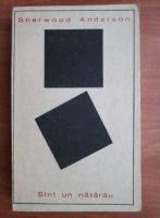 Anticariat: Sherwood Anderson - Sint un natarau
