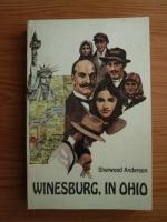 Anticariat: Sherwood Anderson - Winesburg in Ohio