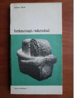 Sidney Geist - Brancusi. Sarutul