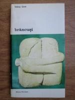 Sidney Geist - Brancusi