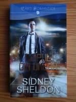 Sidney Sheldon - Chipul din umbra