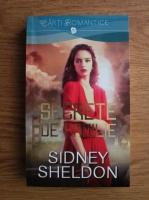 Sidney Sheldon - Secrete de familie
