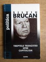 Silviu Brucan - Treptele tranzitiei spre capitalism