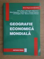 Silviu Negut - Geografie economica mondiala