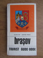 Anticariat: Silviu Pop - Brasov. Tourist guide-book of the country