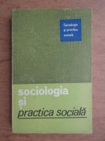Anticariat: Sociologia si practica sociala