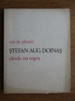 Stefan Augustin Doinas - Cai in ploaie