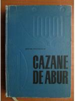 Anticariat: Stefan Gheorghiu - Cazane de abur