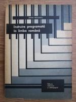 Anticariat: Stefan Radulescu - Instruire programata la limba romana