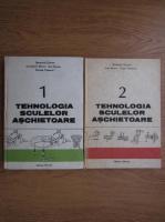 Stefanuta Enache - Tehnologia sculelor aschietoare (2 volume)