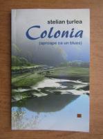 Anticariat: Stelian Turlea - Colonia, aproape ca un blues