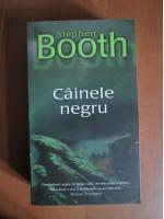 Anticariat: Stephen Booth - Cainele negru
