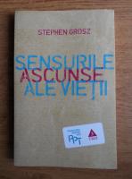 Stephen Grosz - Sensuri ascunse ale vietii