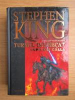 Anticariat: Stephen King - Turnul intunecat, volumul 5. Lupii din Calla