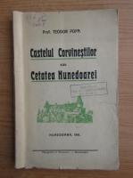 Teodor Popa - Castelul Corvinistilor sau Cetatea Hunedoarei (1941)