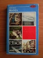 Anticariat: Teofil Balaj - Franta