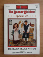 Anticariat: The pilgrim village mystery