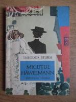 Anticariat: Theodor Storm - Micutul Hawelmann