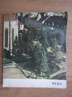 Tiberiu Morariu - Cluj
