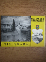 Timisoara (contine harta)