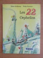 Tjibbe Veldkamp - Les 22 orphelins