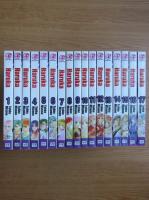 Anticariat: Tohko Mizuno - Haruka (17 volume)