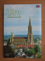 Anticariat: Ulm. A companion to the city