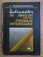 V. Constantinescu - Indrumator in imagini pentru finisaje interioare