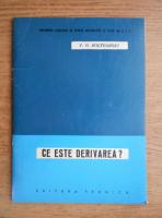 V. G. Bolteanski - Ce este derivarea?